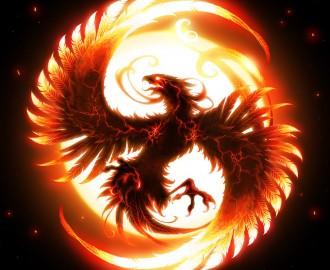 Phoenix (5)